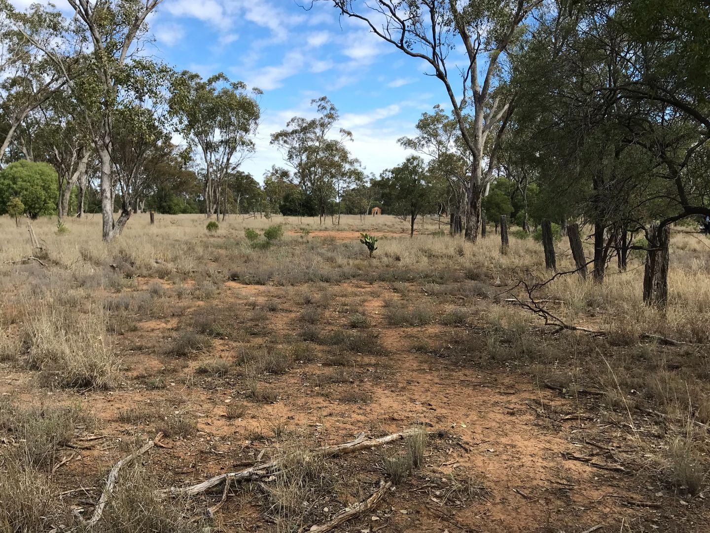 24 - 27 Unnamed Off Railway Road, Mungallala QLD 4467, Image 1