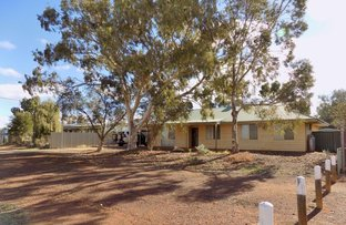 Picture of 23 DOWLEY STREET, Cue WA 6640