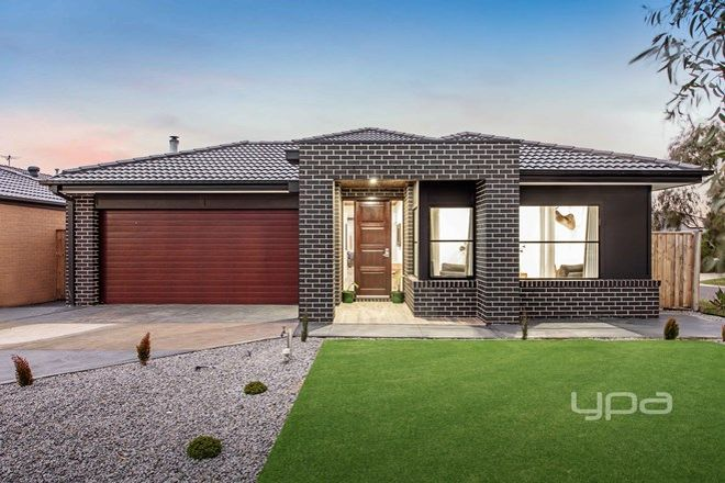 Picture of 2 Vineleaf Avenue, WALLAN VIC 3756