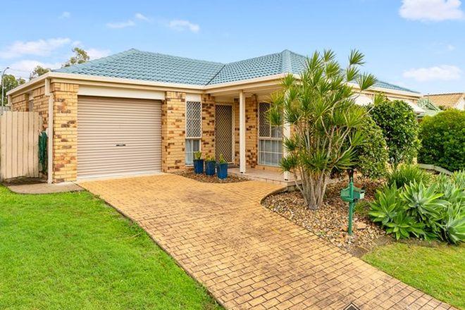 Picture of 38 Eucalyptus Crescent, RUNCORN QLD 4113