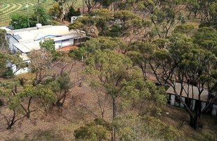 Picture of 77 Gillett Rd, Northam WA 6401