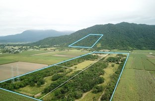 Picture of 67722 Bruce Highway, Babinda QLD 4861