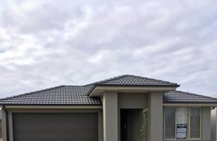 Picture of 19 Grandstand Crescent, Clyde North VIC 3978