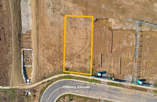 Picture of (Lot 526) 13 Cherry Circuit, Gregory Hills NSW 2557