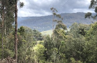 Picture of 825 Elephant Pass, St Marys TAS 7215