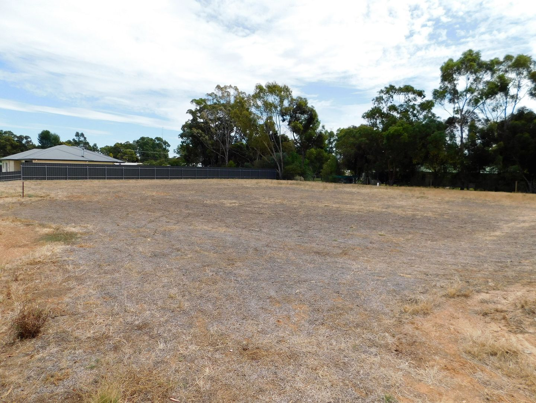 Lot 2 Gum Avenue, Bordertown SA 5268, Image 2