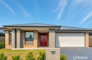 Picture of 19 Franklin Grove, Oran Park NSW 2570