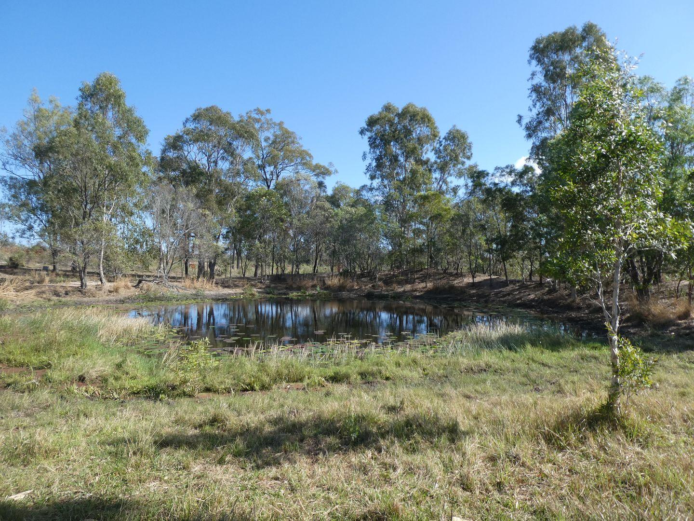 Golden Fleece QLD 4621, Image 1