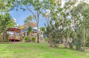 Picture of 8 Hovea Road, Carters Ridge QLD 4563