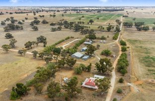 Picture of 118 Ripper Road, Moama NSW 2731