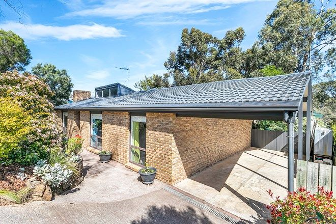 Picture of 5 Grevillea Road, ABERFOYLE PARK SA 5159