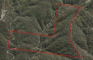 Picture of Lot 60 White Mountain Road, White Mountain QLD 4352