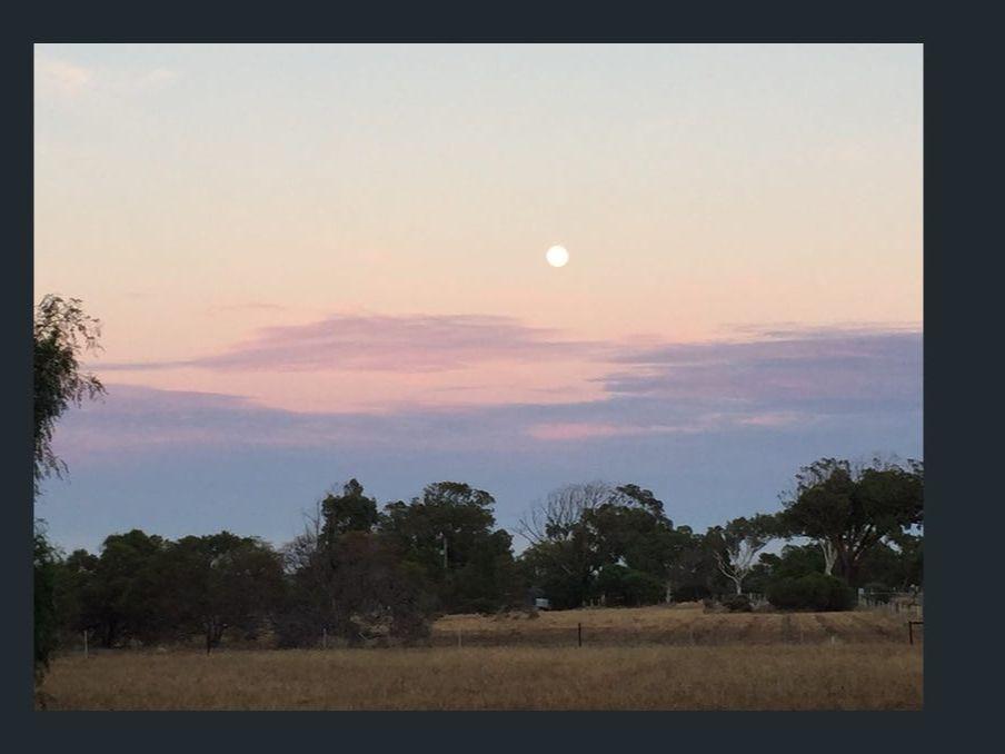 6 Mills Road, Moresby WA 6530, Image 2