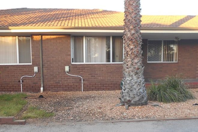 Picture of 23B Zuytdorp Court, MAHOMETS FLATS WA 6530