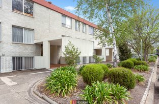 Picture of 38/6 Wilkins Street, Mawson ACT 2607