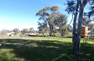 Picture of Lot 258 Sheilas Lane, Frogmore NSW 2586