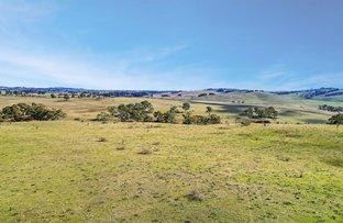 Picture of 149 Summer Hill Lane, Orange NSW 2800