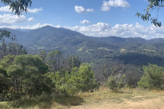 Picture of BROGO NSW 2550