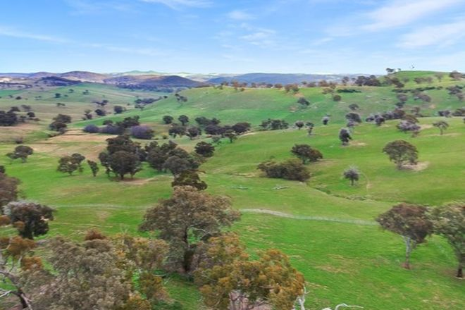 Picture of Lot 101/656 Cow Flat Rd, COW FLAT NSW 2795