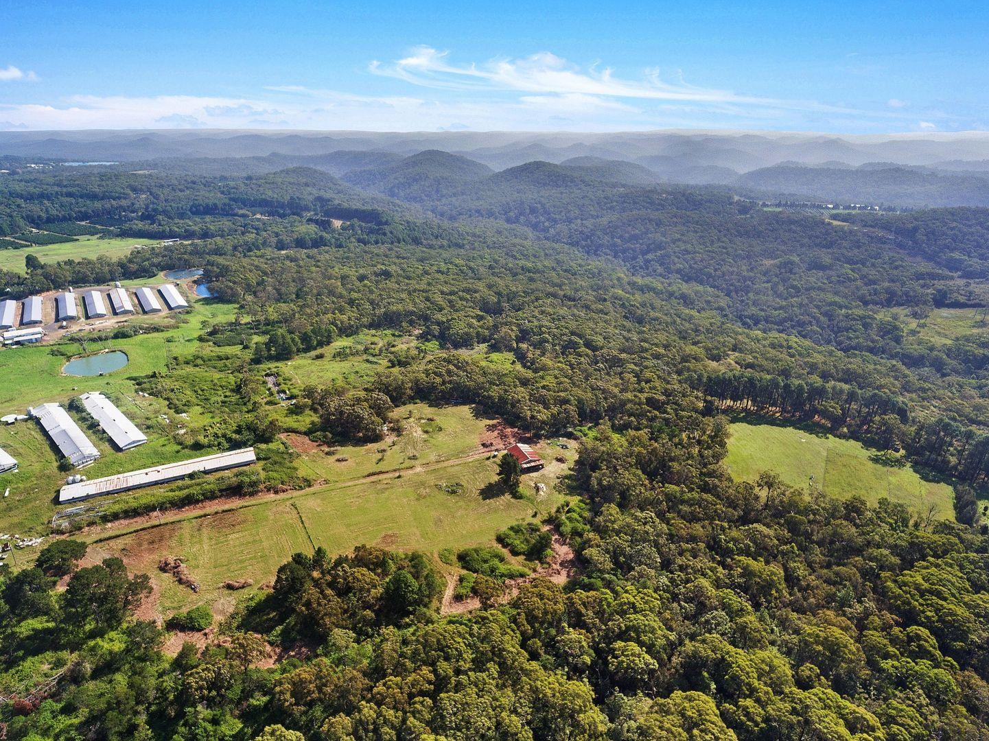 111 Borrisbrook Road, Mangrove Mountain NSW 2250, Image 1