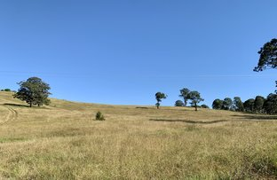 Picture of 234 Marshdale Road, Marshdale via, Dungog NSW 2420