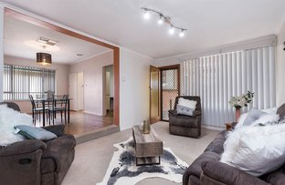 Picture of 22 Leabrook Drive, Para Hills SA 5096