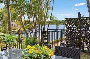 Picture of 39 'Meadow Peak' 85 Palm Meadows Drive, Carrara QLD 4211