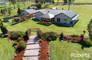 Picture of 199 Winkleigh Road, Exeter TAS 7275