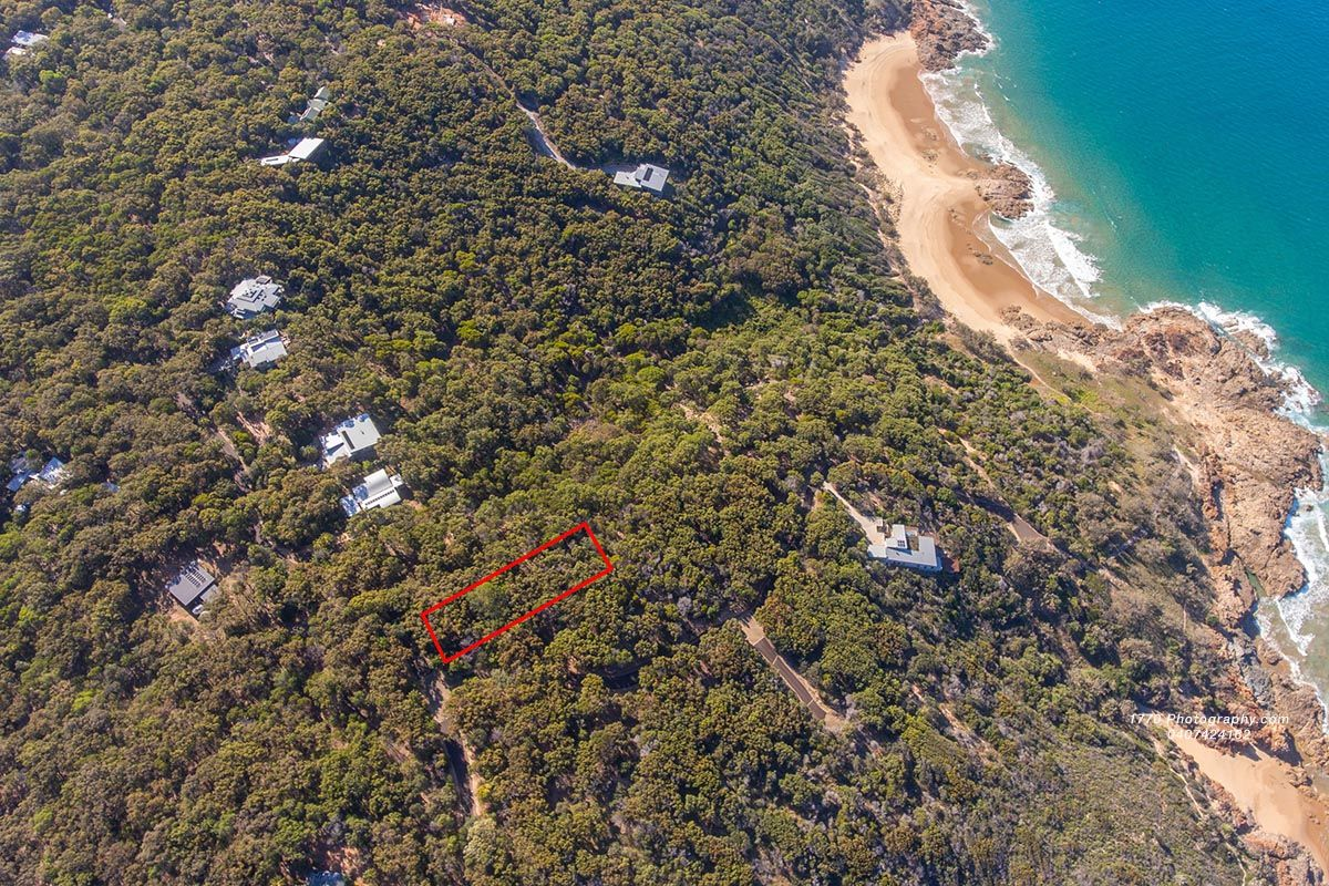 53 Bloodwood South, Agnes Water QLD 4677, Image 1
