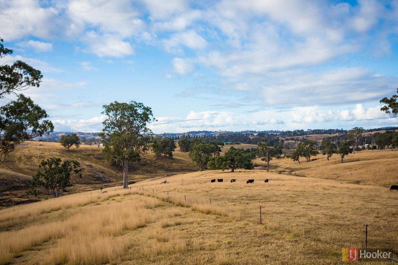 124A Mogilla Road, Candelo NSW 2550, Image 2