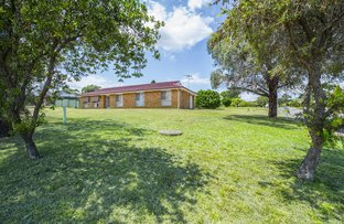 Picture of 13 Chardonnay Street, Muswellbrook NSW 2333
