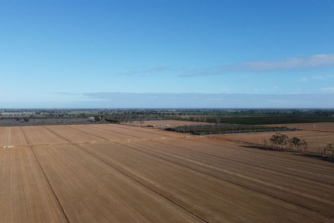 Picture of Lot  2 Sandmount Road, COBRAM VIC 3644
