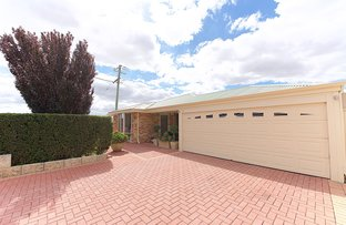 Picture of 62 Gay Street, Huntingdale WA 6110