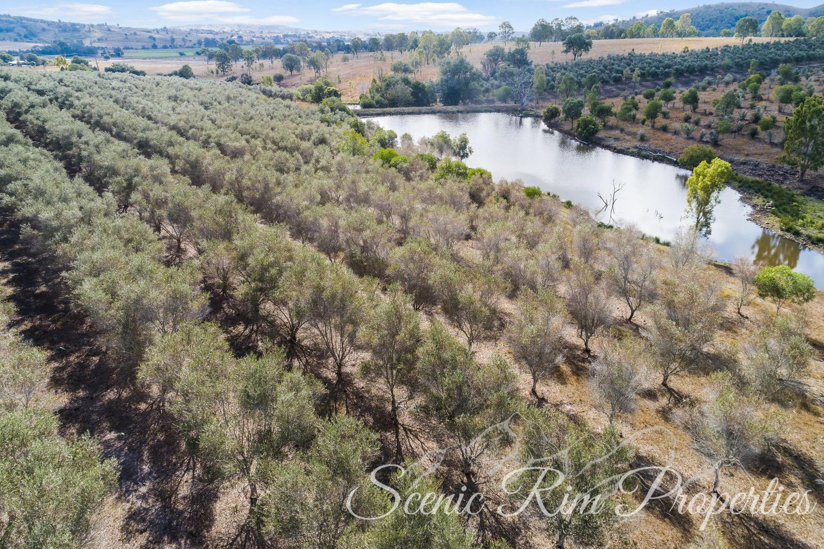 585 Boonah Rathdowney Road, Dugandan QLD 4310, Image 1