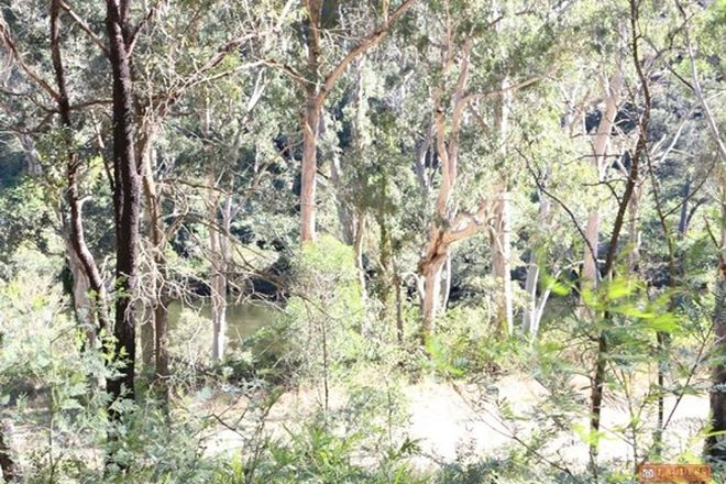 Picture of Lot 37 Nowendoc Road, CAFFREYS FLAT NSW 2424