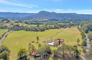 Picture of 592 Upper Orara Road, Upper Orara NSW 2450
