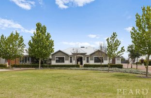 Picture of 14 Tindale Crest, Aveley WA 6069