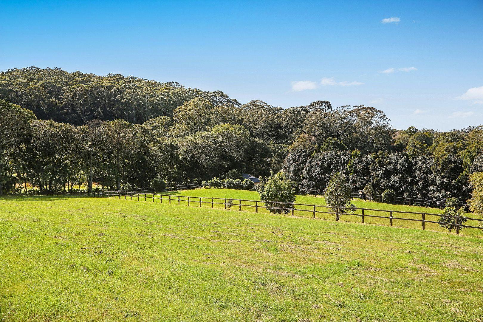 68 Matcham Road, Matcham NSW 2250, Image 2