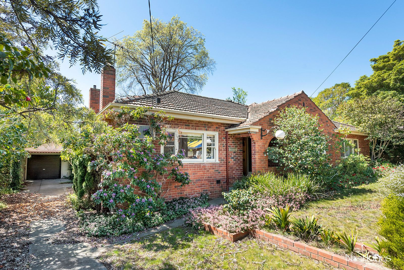 45-47 Begonia Street, Box Hill South VIC 3128, Image 1