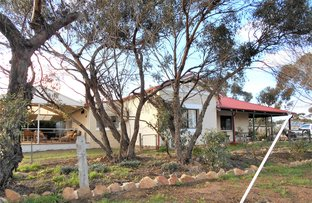 Picture of 100 Taylor Street, Dumbleyung WA 6350