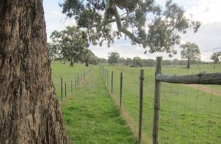 Picture of Lot 9 Sugar Loaf Hill Road, Angaston SA 5353