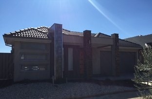 Picture of 56 Rutherglen Way, Caroline Springs VIC 3023