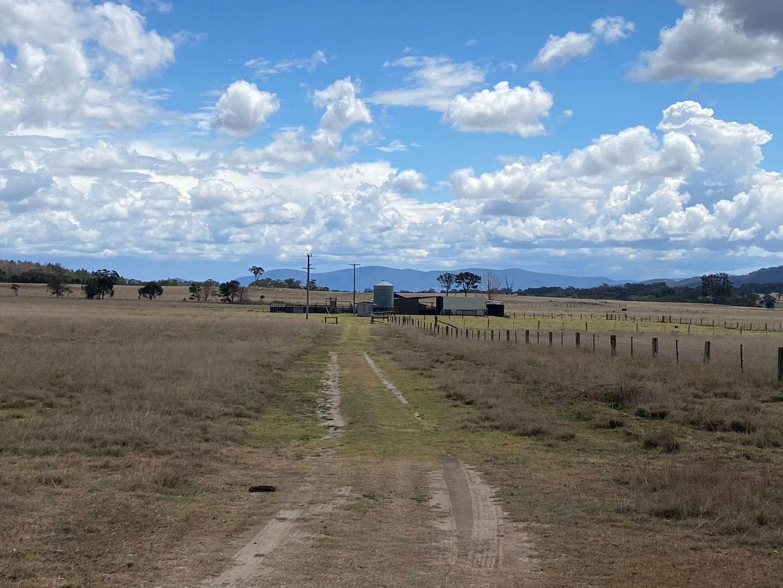 335 Washpool Creek Road, Tenterfield NSW 2372, Image 0