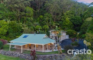 Picture of 699 Tomewin Mountain Road, Currumbin Valley QLD 4223