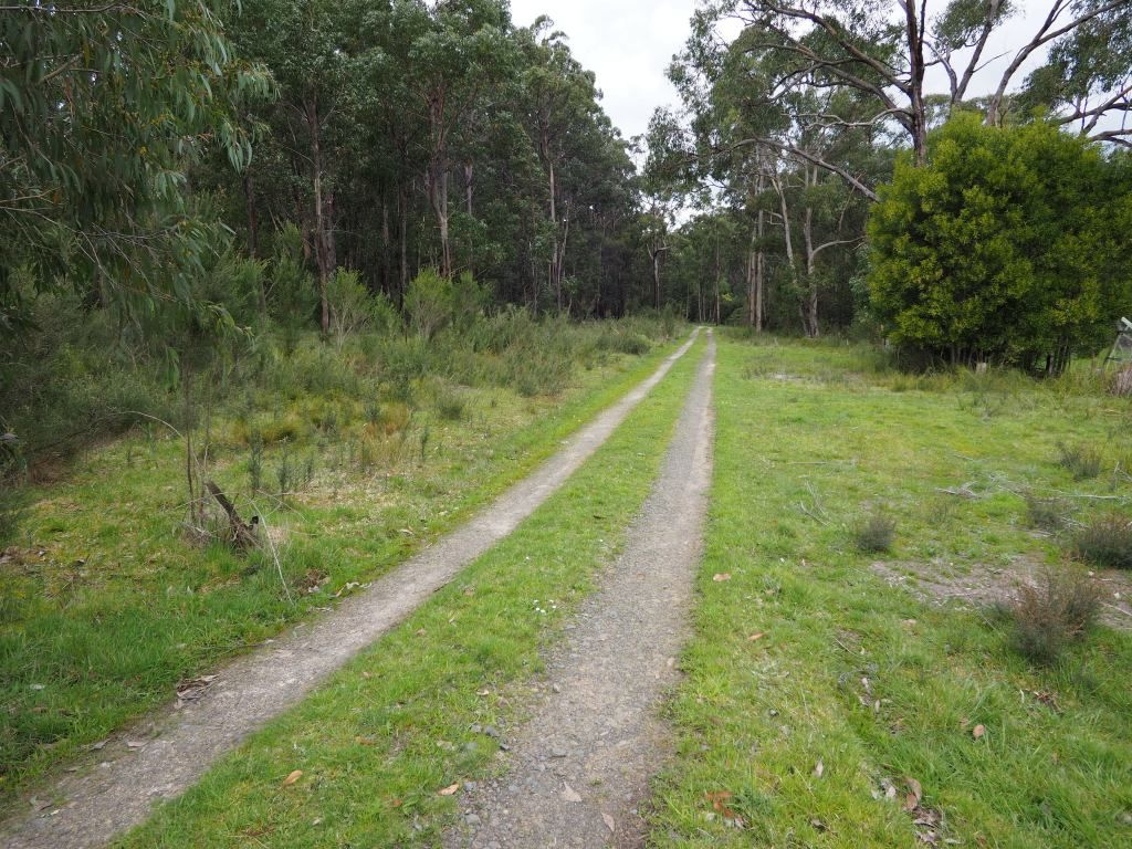 120 Todds Road, Boolarra VIC 3870, Image 1