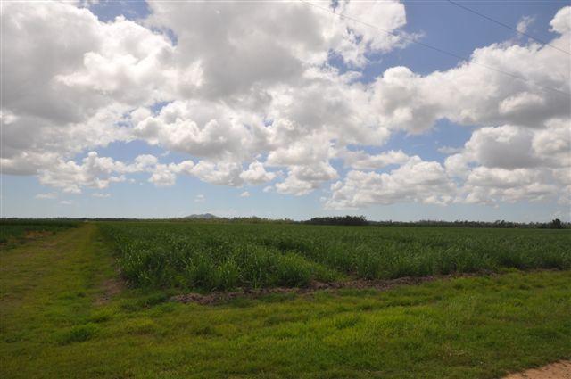 01 Christies Road, Bemerside QLD 4850, Image 1