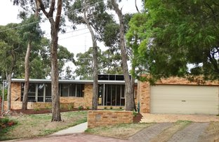 Picture of 3 Judith Grove, Mount Clear VIC 3350