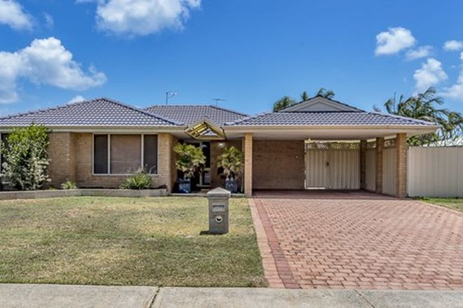 Picture of 47 Templetonia Promenade, HALLS HEAD WA 6210