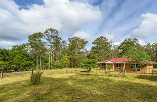 Picture of 26 Arborthirteen Road, Glenwood QLD 4570