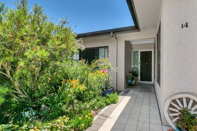Picture of 14/21-29 Giffin Road, WHITE ROCK QLD 4868